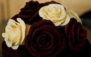 Как сделать шоколадные розы для украшения тортов и десертов