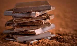 Низкокалорийный шоколад (с самой пониженной калорийностью)