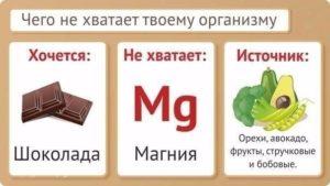 Почему организм требует шоколада