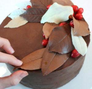 Шоколадный торт поздняя осень
